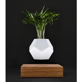 Lyfe Floating Planter