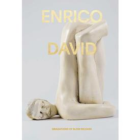 Enrico David : Gradations Of Slow Release