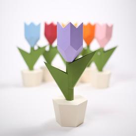 Tulip Paper Sculpture Kit