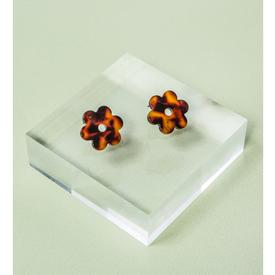 Small Tortoise Shell Daisy Earrings