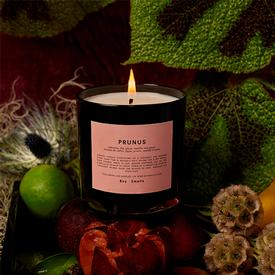 Prunus Candle - Asian Plum and Oakmoss