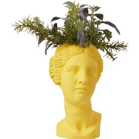 Venus Vase Planter - Canary