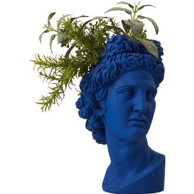 Apollo Vase Planter - Blue
