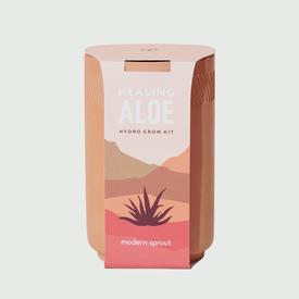 Terracotta Indoor Garden Kit - Aloe ALOE