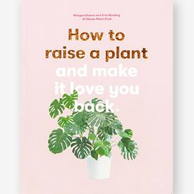 How to Raise a Plant