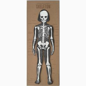Posable Skeleton Paper Doll