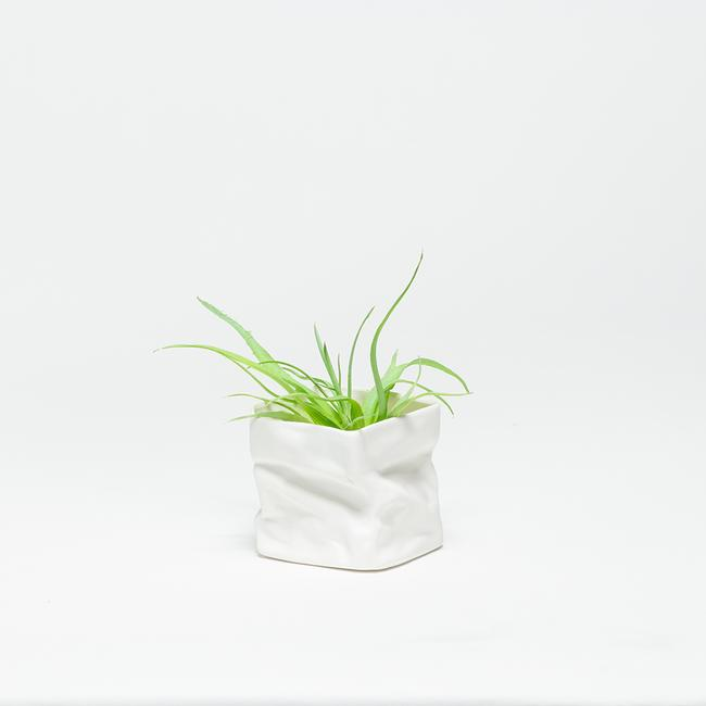 Kiki Planter - Small