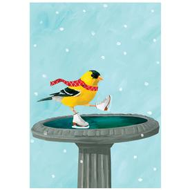 Ice Skating Finch Cards