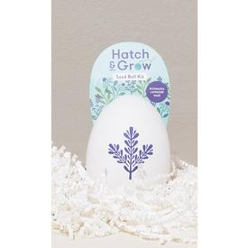 Hatch and Grow Seed Kit - Wellness