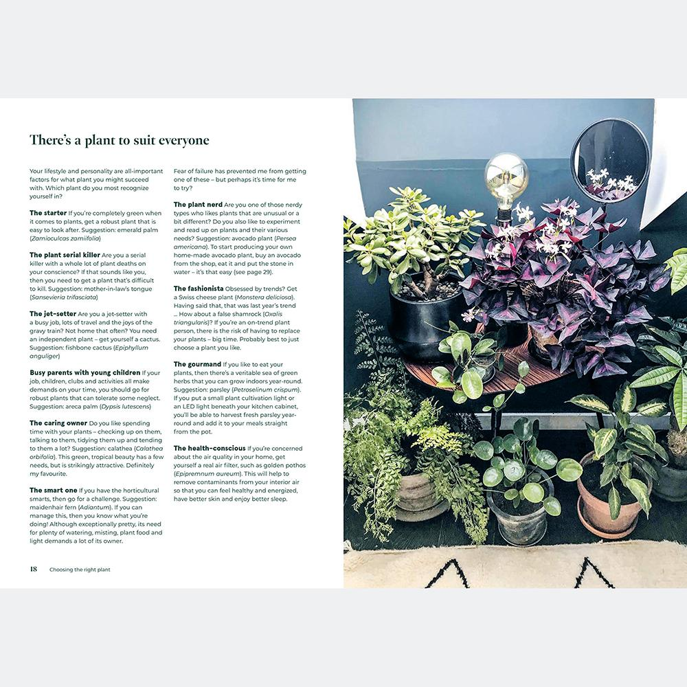 Green Home : The Joy Of Living With Plants
