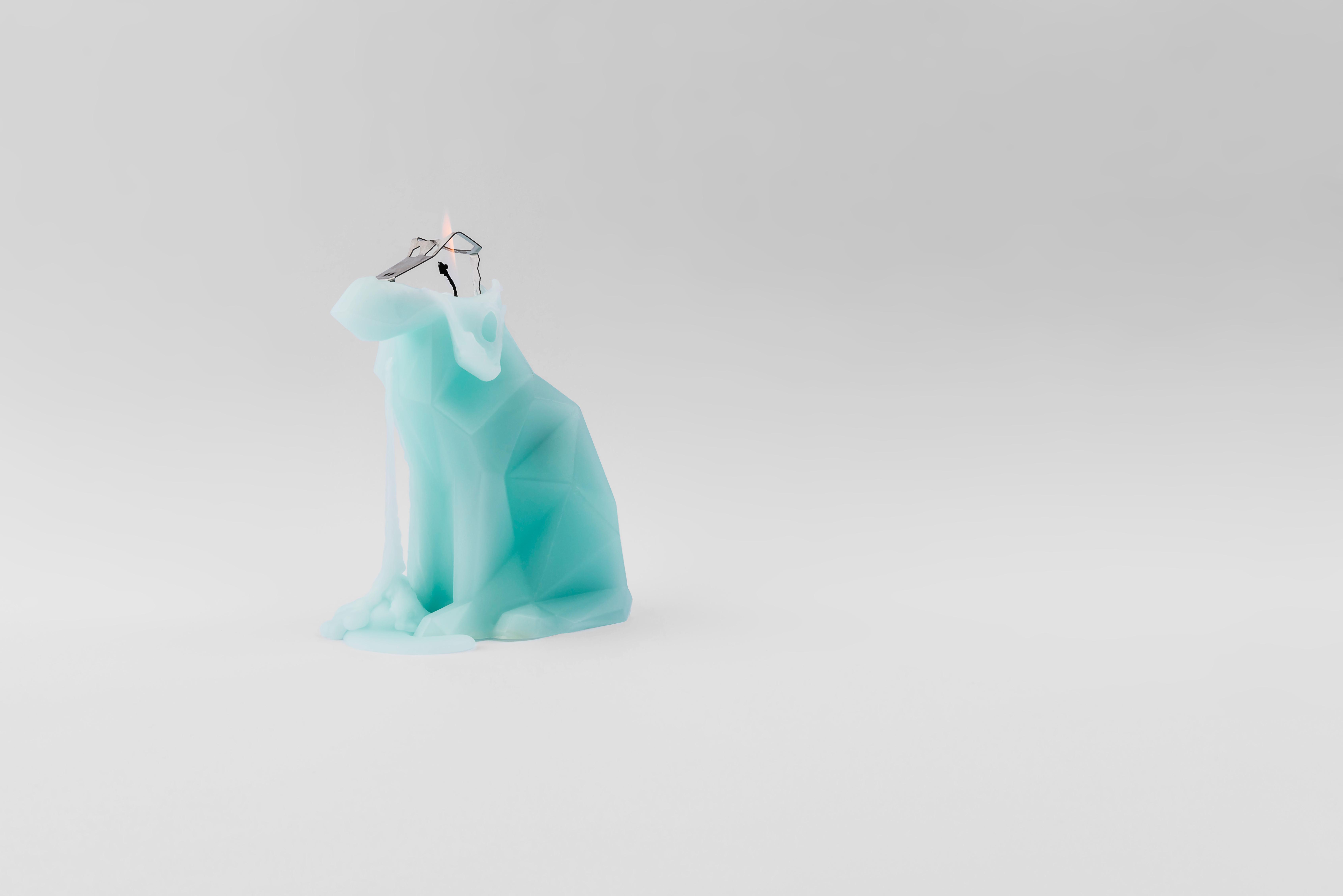 Voffi Mint Dog Skeletal Candle
