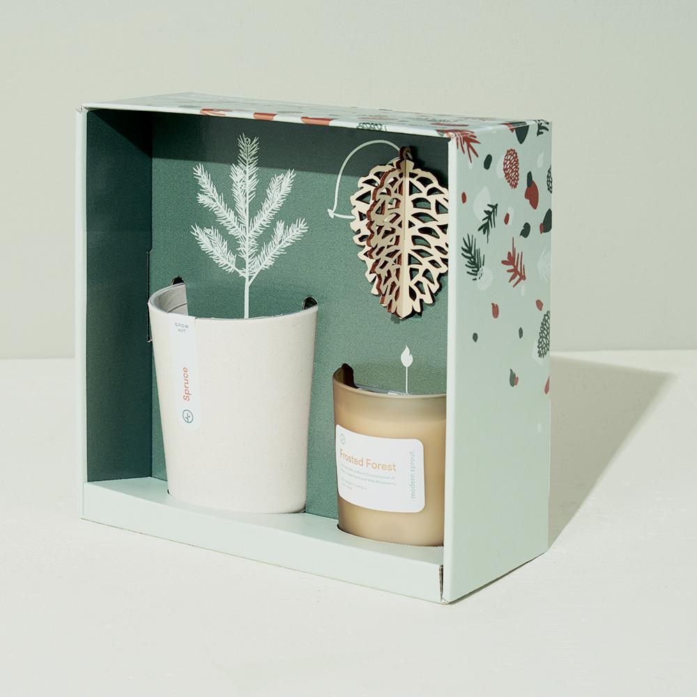 Gather Spruce Grow Kit Gift Set